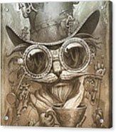 Steampunk Cat Acrylic Print