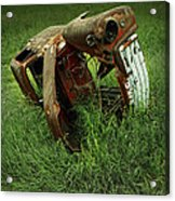 Steel Auto Carcass With Vultures Acrylic Print