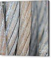 Steel Wire Acrylic Print
