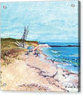 Steep Beach Acrylic Print