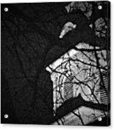 Steeple Acrylic Print