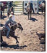 Steer Tripping Acrylic Print by Daniel Hagerman