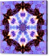 Stellar Spiral Eagle Nebula IIi Acrylic Print