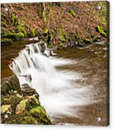 Step In The Scaleber Force Waterfall Acrylic Print