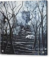 Step Into The Woods Acrylic Print