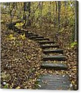 Step Trail In Woods 15 Acrylic Print