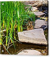 Stepping Stones Across Creek On Lower Palm Canyon Trail In Indian Canyons Near Palm Springs-ca Acrylic Print