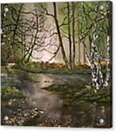 Stepping Stones On Cannock Chase Acrylic Print