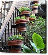 Steps Oh Plants Acrylic Print