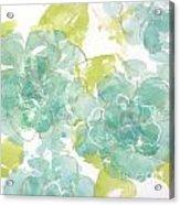 Sterling Camellia I Acrylic Print