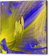 Stigma - Photopower 1195 Acrylic Print