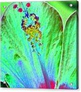 Stigma - Photopower 1278 Acrylic Print
