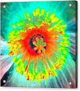 Stigma - Photopower 174 Acrylic Print