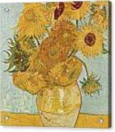 Still Life Sunflowers Acrylic Print