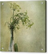 Still Life With Dill And A Cucumber Acrylic Print by Priska Wettstein