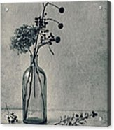 Still Life With Dry Flowers Acrylic Print
