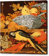 Still Life With Fruit And Macaws, 1622 Acrylic Print