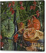 Still Life With Pumpkins And Winter Cherry Acrylic Print