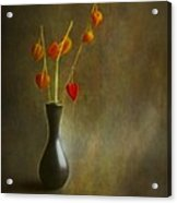 Still Of Life Acrylic Print