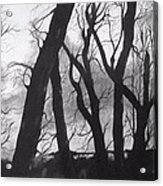 Still Of The Night Acrylic Print