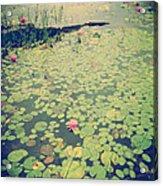 Still Waters Acrylic Print