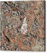 Stone Adornment Acrylic Print