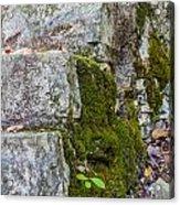 Stone And Moss Acrylic Print