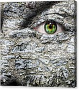 Stone Face Acrylic Print by Semmick Photo