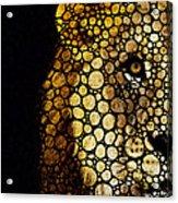 Stone Rock'd Lion - Sharon Cummings Acrylic Print by Sharon Cummings