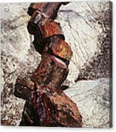 Stone Trees - 337 Acrylic Print