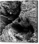 Stonewood Canyon - Bw - Wonderwood Collection - Olympic Peninsula Wa Acrylic Print