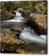 Stony Creek Falls Acrylic Print