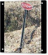 Stop Sign 1 Acrylic Print