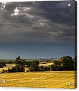 Storm Brewing Over Corn Acrylic Print