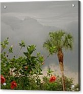 Storm Clouds And Flowers Acrylic Print