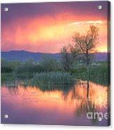 Storm Color Acrylic Print