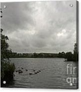 Storm In A Duck Pond Acrylic Print