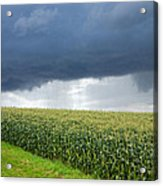 Storm Over Cornfield In Southern Germany Acrylic Print