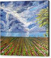 Storm Over Homestead Acrylic Print