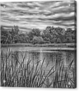 Storm Passing The Pond In Bw Acrylic Print
