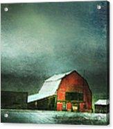 Storm Acrylic Print by Theresa Tahara