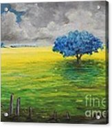 Stormy Clouds Acrylic Print by Alicia Maury
