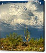 Stormy Desert Skies  Acrylic Print
