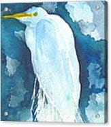 Stormy Egret Acrylic Print