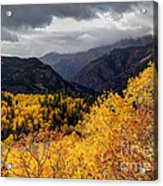 Stormy Fall Along The Alpine Loop - Utah Acrylic Print