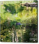 Stow Lake Idyll Acrylic Print
