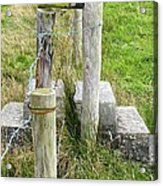 Straddle The Fence Acrylic Print