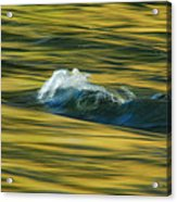 Straight Up The Middle Acrylic Print