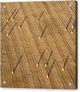 Straw Bales, Chenevelles Acrylic Print