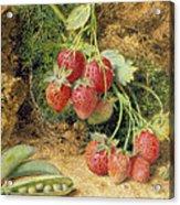 Strawberries And Peas Acrylic Print by John Sherrin